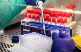 вакцину от коронавируса испытали на человеке